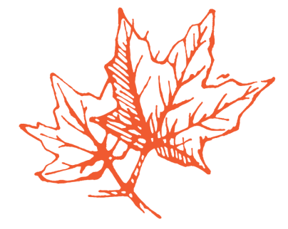 liquidambra_disegno_C0-M80-Y90_K0